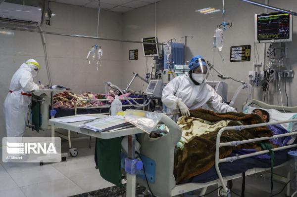 خبرنگاران چهار مورد جدید ویروس کرونای انگلیسی در استان مرکزی شناسایی شد